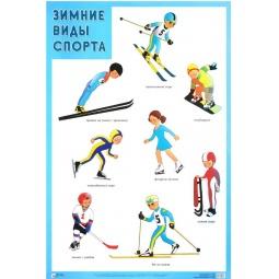 Купить Зимние виды спорта