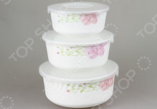 Набор контейнеров для продуктов Rosenberg 1259-2