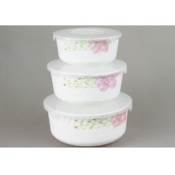 Купить Набор контейнеров для продуктов Rosenberg 1259-2