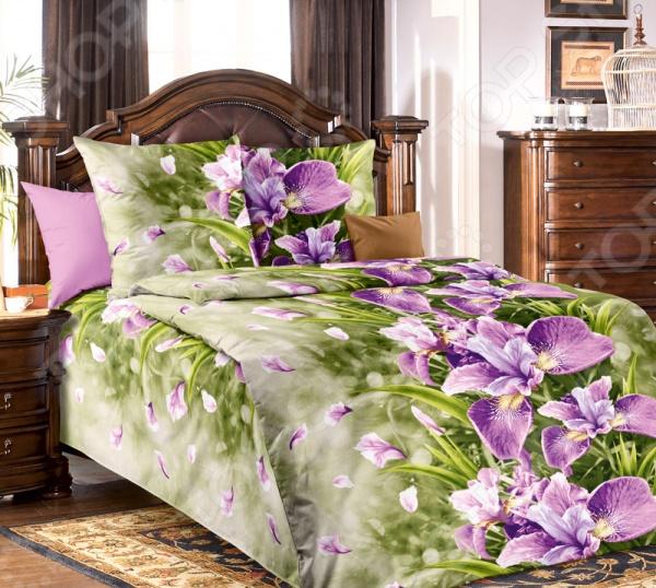 Комплект постельного белья Белиссимо «Анастасия». 1,5-спальный