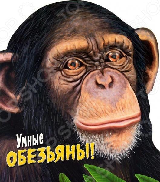 Умные обезьяны!Животные. Растения. Природа<br>Крупные яркие изображения и удивительные факты, описывающие странное и порой таинственное поведение животных, погружает юных читателей в мир обезьян - от самых агрессивных до самых необычных.<br>