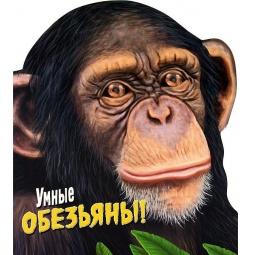 фото Умные обезьяны!