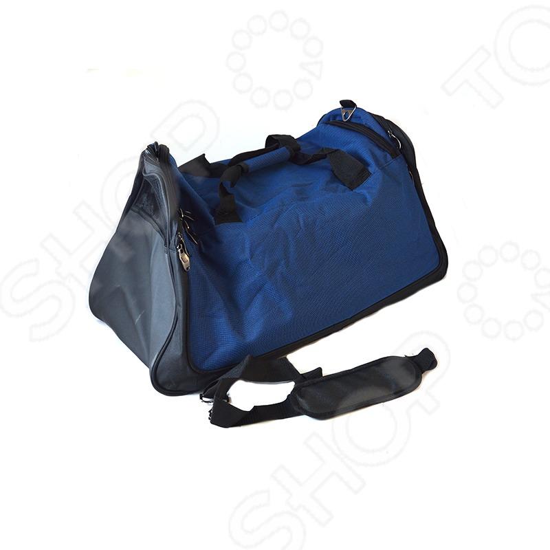 93edd10ee6de Сумка спортивная Century 2148. Цвет: синий купить по низкой цене в ...