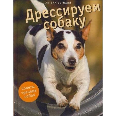 Купить Дрессируем собаку