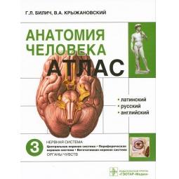 фото Анатомия человека. Атлас. В 3 томах. Том 3