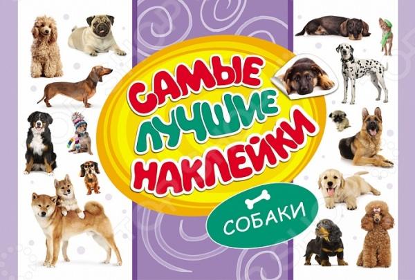 Книжки с наклейками Росмэн 978-5-353-07678-0