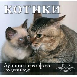 Купить Календарь. Котики. Лучшие кото-фото. 365 дней в году