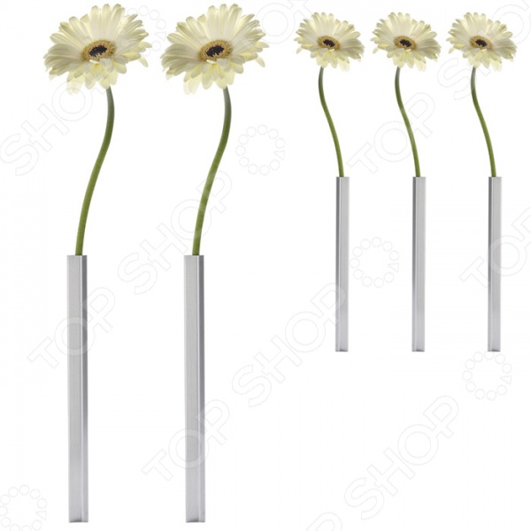 Набор ваз магнитных Peleg Design Magnetic Vase это набор из пяти ваз, которые на стоят на столе, а парят над ним. Практически невозможно догадаться, как же они держатся. Вот небольшой секрет: у каждой вазы есть магнитное основание, которое вы можете спрятать под скатертью. В набор входит 5 ваз и 5 оснований. Новый креативный бренд Peleg Design разрушит ваши стереотипы о том, как должны выглядеть вещи, которыми мы пользуемся каждый день. Разработчики моделей пытаются создать функциональные аксессуары, в оригинальном дизайнерском исполнении. С помощью этих аксессуаров вы сможете взглянуть на повседневные вещи совершенно под другим углом, а продукция этого бренда придется по вкусу даже самым взыскательным потребителям.