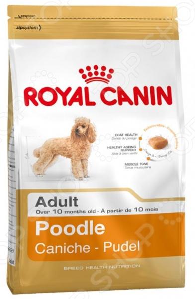 Корм сухой для собак породы пудель Royal Canin Adult PoodleСухой корм<br>Корм сухой Royal Canin Adult Poodle предназначен специально для пуделей. Мало кто знает, но они занимают второе место среди самых умных пород собак. Представленный вид питания содержит все необходимые витамины, минералы и питательные вещества, чтобы домашний любимец был сыт и здоров. Стоит отметить, что ученым из компании Royal Canin удалось сохранить прекрасные вкусовые качества корма, поэтому ваш четвероногий друг будет в восторге от своего нового блюда. Преимущества корма Royal Canin Adult Poodle:  Омега-3 и Омега-6 жирные кислоты улучшают состояние кожи и шерсти;  Поддержка мышечного тонуса животного;  Питательные вещества способствуют долголетию;  Хелаторы кальция ограничивают образование зубного камня. Кормить собаку следует в соответствии со следующим руководством:      Вес собаки     2 кг     4 кг     6 кг     8 кг     10 кг     12 кг       Пониженная   активность     39 г     66 г     89 г     111 г     131 г     150 г       Умеренная   активность     45 г     76 г     104 г     128 г     152 г     174 г<br>