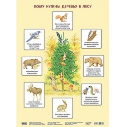 Купить Кому нужны деревья в лесу