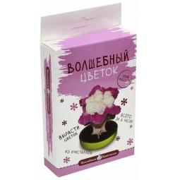 фото Набор для выращивания Волшебные кристаллы «Пурпурный цветок»
