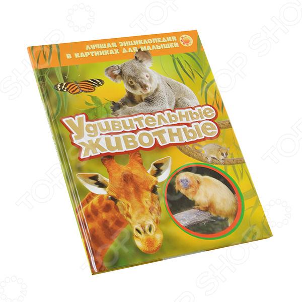 Удивительные животныеЖивотные. Растения. Природа<br>В раннем возрасте дети любят рассматривать картинки. Книги с яркими фотографиями познакомят малыша с техникой, автомобилями, с разными видами животных, дадут самые первые знания об окружающем мире. Познавай и открывай мир с ЛУЧШЕЙ ЭНЦИКЛОПЕДИЕЙ В КАРТИНКАХ ДЛЯ МАЛЫШЕЙ!<br>