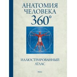 Купить Анатомия человека 360. Иллюстрированный атлас