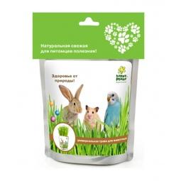 Купить Трава для животных Happy Plant hp-43