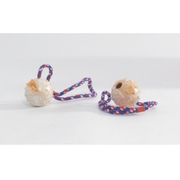 фото Игрушка для собак Beeztees «Мяч на веревочке» 640940