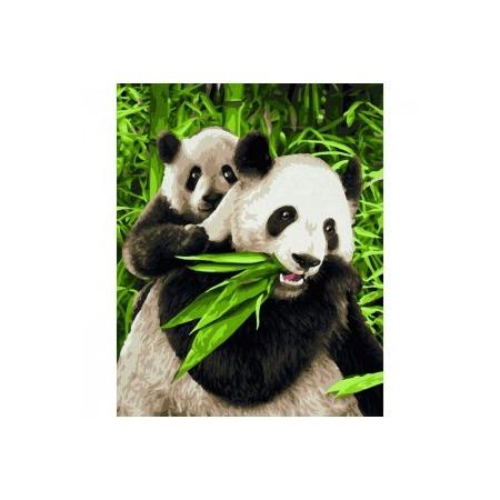 Купить Набор для рисования по номерам Schipper «Панды»