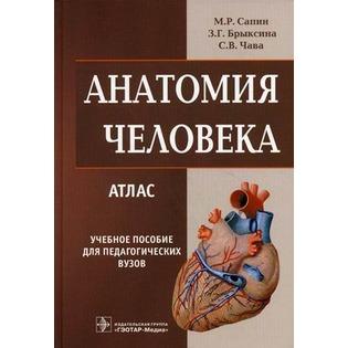 Купить Анатомия человека. Атлас. Учебное пособие для медучилищ и колледжей