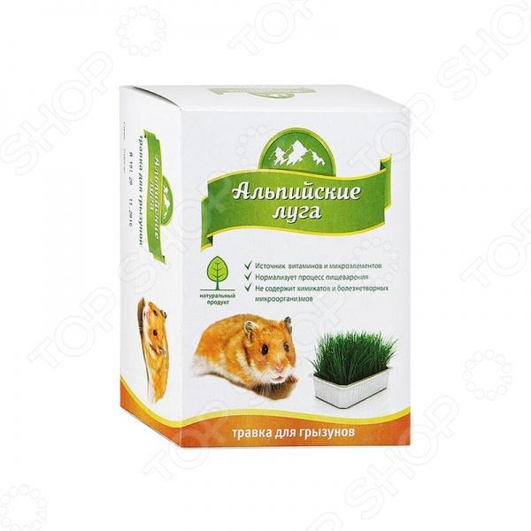 Трава для грызунов Альпийские луга А101Сено. Трава<br>Трава для грызунов Альпийские луга А101 - непременно понравиться вашим питомцам. Поедание травы - естественная потребность любого животного. Травка Альпийские луга позволяет нормализовать процесс пищеварения, станет источником клетчатки, углеводов и витаминов. Кроме того, трава стимулирует процесс очищения желудка от шерсти. В отличие от уличной травы не содержит химикатов, тяжелых металлов, микробов и яйца глистов.<br>
