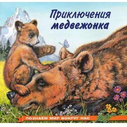 фото Приключения медвежонка