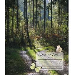 Купить Тетрадь в клетку Пересвет Forest Book. В ассортименте