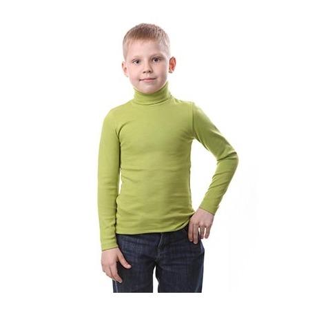 Купить Водолазка для мальчика Свитанак 857627