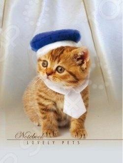 Блокнот Бриз «Стильный котенок»