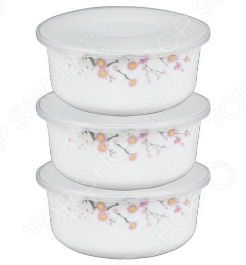 Набор контейнеров для продуктов Rosenberg 1258-1