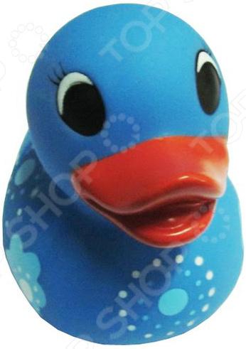 Игрушка для ванны детская «Утенок голубой в цветочек»Игрушки для ванны<br>Игрушка для ванны Утенок голубой в цветочек предназначена для таких маленьких, но уже таких любознательных малышей. Модель создана в забавном, красочном стиле и имеет округлые очертания, что очень нравится детям. Забавный утенок сделает ежедневное купание увлекательным процессом, который займет вашего кроху на весь период принятия водных процедур. Игрушка способствует развитию зрительной координации, воображения и мелкой моторики рук малыша. Кроме того, тренируется наблюдательность, образное восприятие и логическое мышление. Почему стоит купить игрушку для ванной Утенок голубой в цветочек  Развлечет ребенка во время купания.  Выполнена в оригинальном дизайне.  В качестве материалов использован высококачественный силикон.<br>