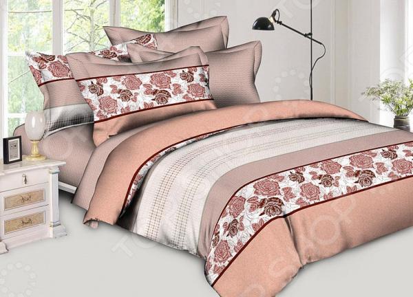 Комплект постельного белья BegAl ВТ003-СА526. ЕвроЕвро<br>Комплект постельного белья BegAl ВТ003-СА526 оптимальный выбор для современной спальни. Комплект произведен из поплина 100 хлопковой ткани. Материал приятный на ощупь, выдерживает множество стирок и хорошо держит форму. Преимущества:  Легко стирать и гладить, не беспокоясь о потере формы.  Показатели усадки минимальны, поэтому белье всегда будет соответствовать заявленным размерам.  Поплин обладает высокой стойкостью к бытовому трению, поэтому выдерживает множество стирок. Уход: Стирать при температуре 60 С. Не отбеливать. Сушка в стиральной машине при нормальной температуре. Гладить можно при высокой температуре. Химическая чистка запрещена.<br>