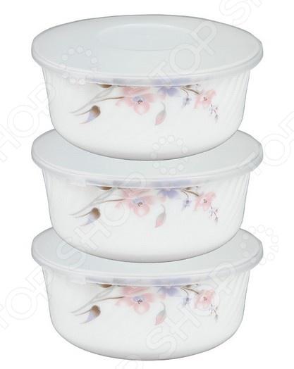 Набор контейнеров для продуктов Rosenberg 1258-4