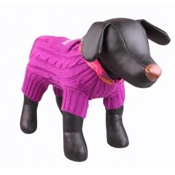 фото Свитер для собак DEZZIE «Чемпион Сочи»