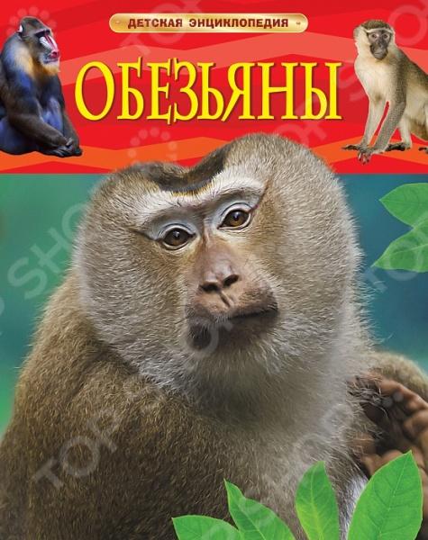 ОбезьяныЖивотные. Растения. Природа<br>В животном мире у обезьян особое место. Вместе с полуобезьянами и человеком они входят в единый отряд приматов. В книге собраны интересные познавательные сведения об этих удивительных животных, похожих на людей. Вы узнаете о местах обитания, образе жизни и повадках орангутанов, горилл, шимпанзе, капуцинов, игрунок и других обезьян.<br>