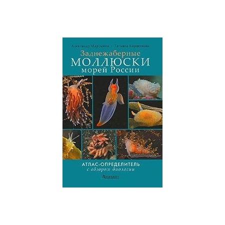 Купить Заднежаберные моллюски морей России