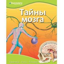 Купить Тайны мозга