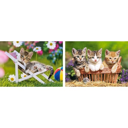 Купить Набор пазлов 2 в 1 Castorland «Котята в саду»