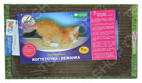 Когтеточка Рав домашняя с кошачьей мятой