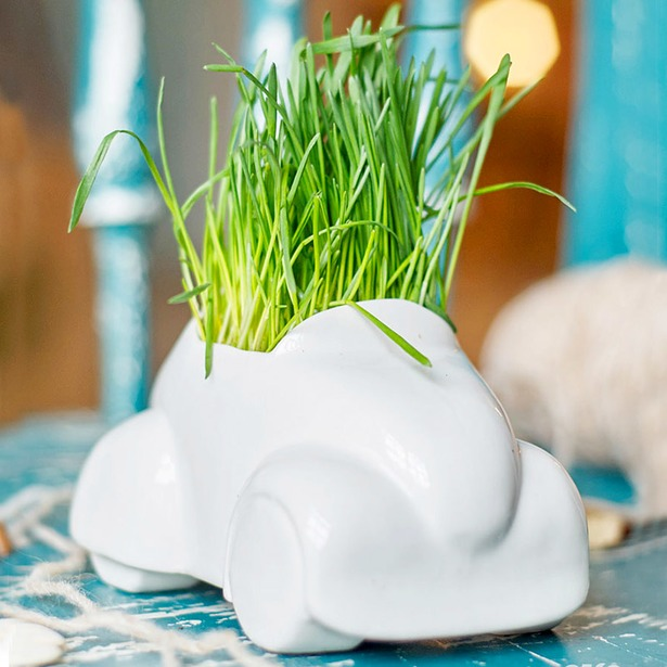 фото Набор для выращивания Экочеловеки Eco «Машина»