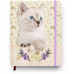 фото Дневник школьный Проф-Пресс «Кошка-синеглазка»
