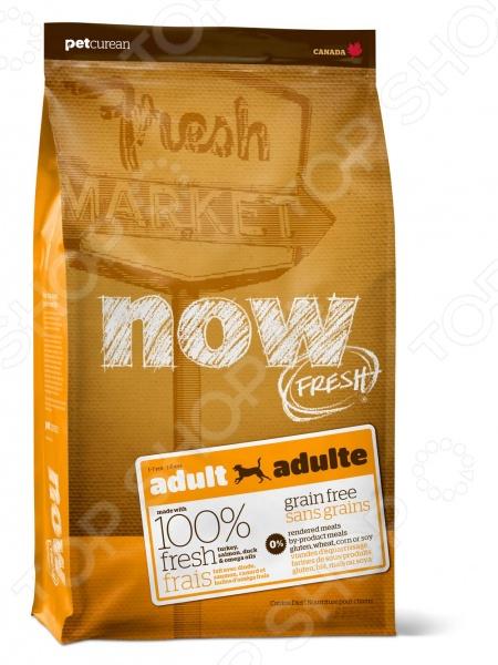 Корм сухой для собак беззерновой NOW Fresh Adult Recipe Grain FreeСухой корм<br>Корм сухой для собак беззерновой NOW Fresh Adult Recipe Grain Free повседневный рацион с разнообразными видами мяса и овощами для более сбалансированного питания питомца. Этот биологически соответствующий корм идеально подходит для собак склонных к полноте и активных собак. Сбалансированная формула включает в себя только натуральные ингредиенты. Что представляет из себя корм NOW Fresh Adult Recipe Grain Free:  Сбалансированное содержание белков и жиров.  Не содержит субпродуктов, красителей, говядины, мясных ингредиентов, выращенных на гормонах.  Омега-масла в составе необходимы для здоровой кожи и шерсти.  Пробиотики и пребиотики обеспечивают здоровое пищеварение.  Антиоксиданты укрепляют иммунную систему и замедляют процесс старения.  Цельные ягоды, фрукты, овощи - брокколи, горошек, черника, тыква, шпинат, водоросли, клюква, ростки люцерны и прочее. Суточная норма кормления:    Вес собаки кг   1-2,3   2,3-4,5   4,5-9   9-13,6   13,6-23   23-32   32-41   41-50   50-64    Для собак склонных к полноте г   47-64   64-74   74-125   125-169   169-212   212-284   284-331   331-425   425-706    Для активных собак г   53-72   72-82   82-138   138-188   188-235   235-315   315-368   368-473   473-784   Для нормального самочувствия вашего питомца следует придерживаться этой нормы кормления: Следите за тем, чтобы у вашей собаки была чистая и свежая вода в миске.<br>