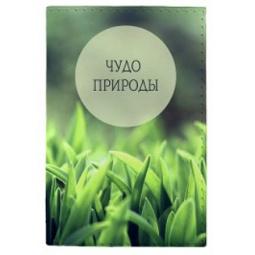 фото Обложка для паспорта Mitya Veselkov «Чудо пироды»