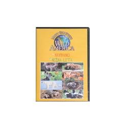 Купить Видео о животных Wild America