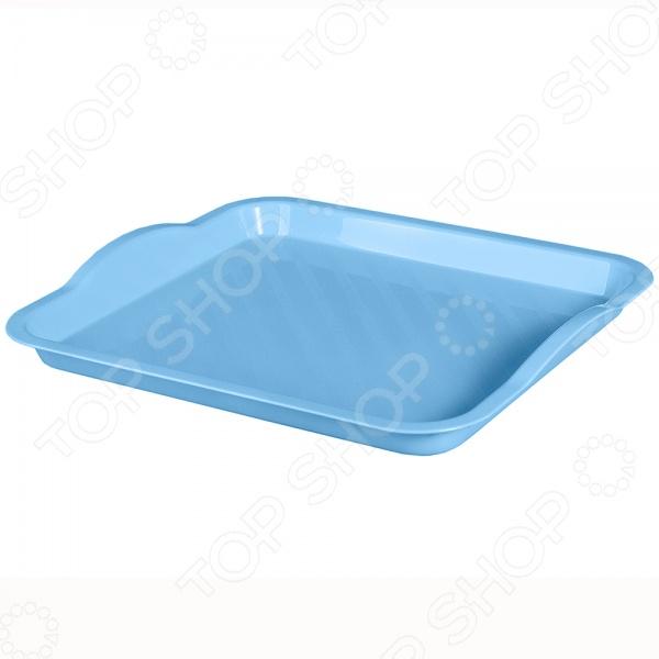 Поднос IDEA М 1109 незаменимый аксессуар для подачи блюд к повседневному или праздничному столу. Кроме того, этот поднос может пригодиться для подачи завтрака в постель любимому человеку. Изделие выполнено из высококачественного пластика.