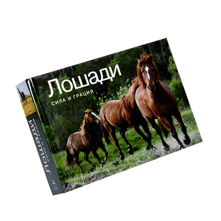Купить Лошади. Сила и грация