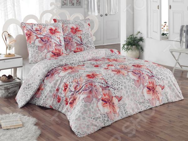 Комплект постельного белья Tete-a-Tete «Катрина» с дополнительной простыней. 2-спальный2-спальные<br>Комплект постельного белья Tete-a-Tete Катрина с дополнительной простыней это сочетание прекрасного качества и стильного современного дизайна. Он внесет яркий акцент в интерьер вашей спальной комнаты, добавит ей элегантности и изысканности. В набор входит пододеяльник, простыня и две наволочки. Постельное белье выполнено из высококачественной бязи и украшено оригинальным цветочным принтом. Бязь представляет собой хлопчатобумажную ткань полотняного переплетения. Она отлично зарекомендовала себя в пошиве постельного белья, благодаря своей воздухопроницаемости, легкости и устойчивости к истиранию. Ткани и готовые изделия производятся на современном импортном оборудовании и отвечают европейским стандартам качества. Рекомендуется стирать белье в деликатном режиме без использования агрессивных моющих средств. В подарок к комплекту идет дополнительная простыня размером 180х220 см.<br>