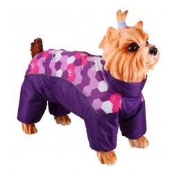 Купить Комбинезон-дождевик для собак DEZZIE «Вест-хайленд-уайт-терьер». Цвет: фиолетовый