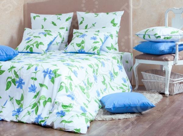 Комплект постельного белья MIRAROSSI Veronica blue. СемейныйСемейные<br>Комплект постельного белья MIRAROSSI Veronica blue. Семейный привнесет в вашу жизнь море ярких красок, тепла и приятных впечатлений! Комплект MIRAROSSI из коллекции Tocco Floreale это настоящая Италия у вас дома! С таким постельным бельем ваша спальня наполнится ощущением лазурного неба, ласкового солнца и очарованием цветущих садов. Даже в холодные зимние вечера в вашем доме сохранится тепло и уют. Комплект постельного белья MIRAROSSI Veronica blue выполнен из великолепной ткани. Перкаль-люкс это современный материал, который пользуется заслуженной популярностью во всем мире и относится к люксовому классу. Ткань из 100 хлопка плотностью 135 гр м.кв. отличается повышенной износостойкостью качественный комплект может выдержать более тысячи стирок! , гладкостью, приятными тактильными ощущениями при контакте. При изготовлении ткани для комплектов белья MIRAROSSI применяется инновационная технология обработки ткани Easy Care. В нашей стране перкаль принято ставить в один ряд с натуральным шелком или сатином. Купить комплект постельного белья MIRAROSSI Veronica blue можно в нескольких вариантах. Состав комплекта отличается размером наволочек. Простыня 220х240 см; Пододеяльник 2 шт. 140х205 см; Наволочки 2 шт.  50х70 см или 70х70 см.  Комплект постельного белья MIRAROSSI Veronica blue экологически чистый и безопасный продукт, отмеченный знаком Eco Friendly. Для более долговечного использования рекомендуется стирка при 40 С максимально 60 С .  Преимущества комплектов постельного белья MIRAROSSI серии Tocco Floreale Эксклюзивный дизайн и неповторимая расцветка, защищенные законом об Авторском Праве вы не найдете аналогов! Материал: ПЕРКАЛЬ-люкс из Италии, 100 хлопок. Активная печать, 3D моделирование дизайна. Прочная, мягкая и приятная к телу ткань. Инновационная технология обработки EASY CARE. Сертификат ЕАС и знак Eco Friendly.  Постельное белье MIRAROSSI серии Tocco Floreale - это отличный вариант дл