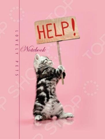 Блокнот Бриз «Помоги котенку»