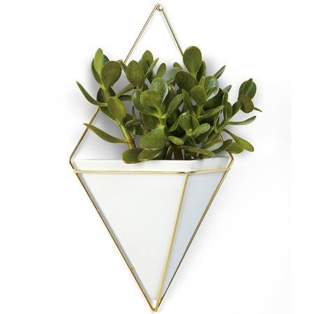 Купить Кашпо настенное декоративное Umbra Trigg. Материал корпуса: керамика, металл
