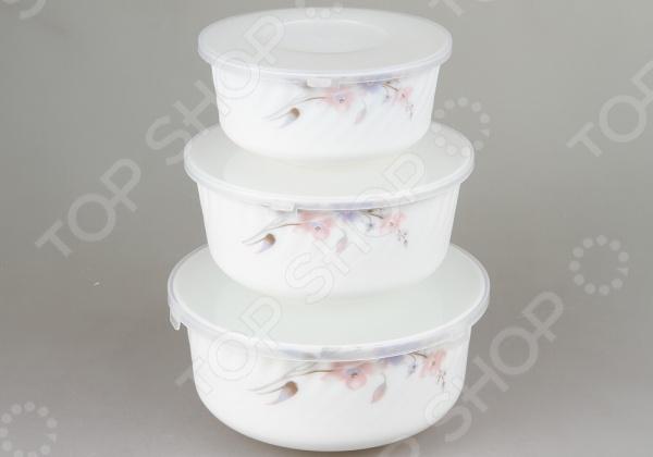 Набор контейнеров для продуктов Rosenberg 1259-4