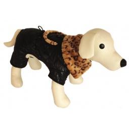 Купить Комбинезон для собак DEZZIE Кабри
